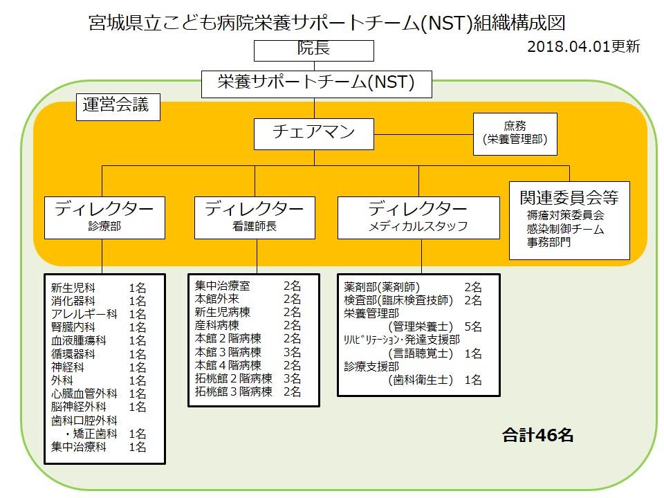 NST組織図2018年度